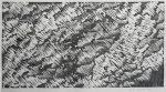 鄭相和「無題」木版画 30×58cm
