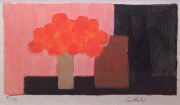 カトラン「ピンクバックのオレンジの花」