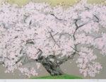 中島千波「春麗山桜」シルクスクリーン45.3×60.7cm