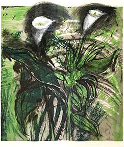 ジム・ダイン「Calla Lillies,Verona1」版画
