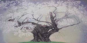 中島千波「樹霊淡墨桜」木版画