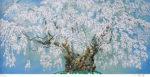 中島千波「坪井の枝垂桜」版画リトグラフ35×73cm