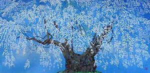 中島千波「坪井の枝垂」木版画