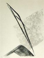 篠田桃紅「EPIGRAPH」版画59×42cm