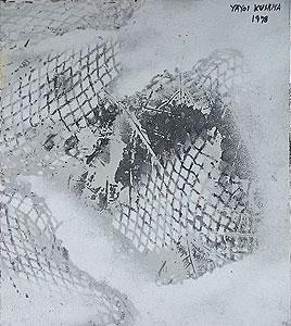 草間彌生「梢をわたる風」3号色紙にエナメル