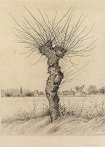 長谷川潔「ニレの樹」銅版画