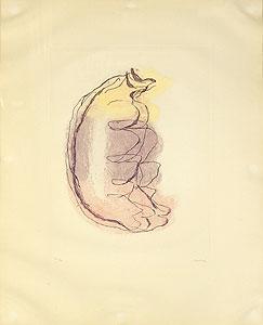 ジャン・フォートリエ「大きな女のトルソ」銅版画