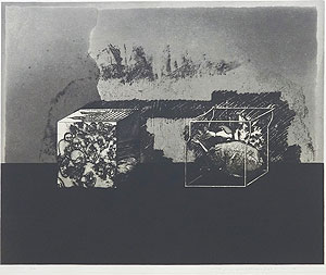 中林忠良「囚われる風景 I」銅版画 1973年